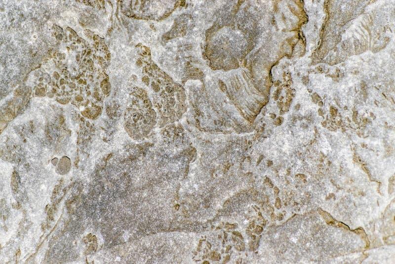 Grova grå färger med guld- den texturerade fläckkristallen vaggar bakgrund arkivbild