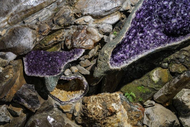 Grova kristaller f?r ametistklunga royaltyfria bilder