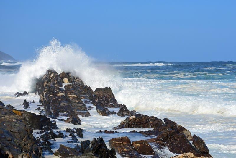 Grovt hav & höga vågor, flod för storm` s, Tsitsikamma, Sydafrika royaltyfri bild
