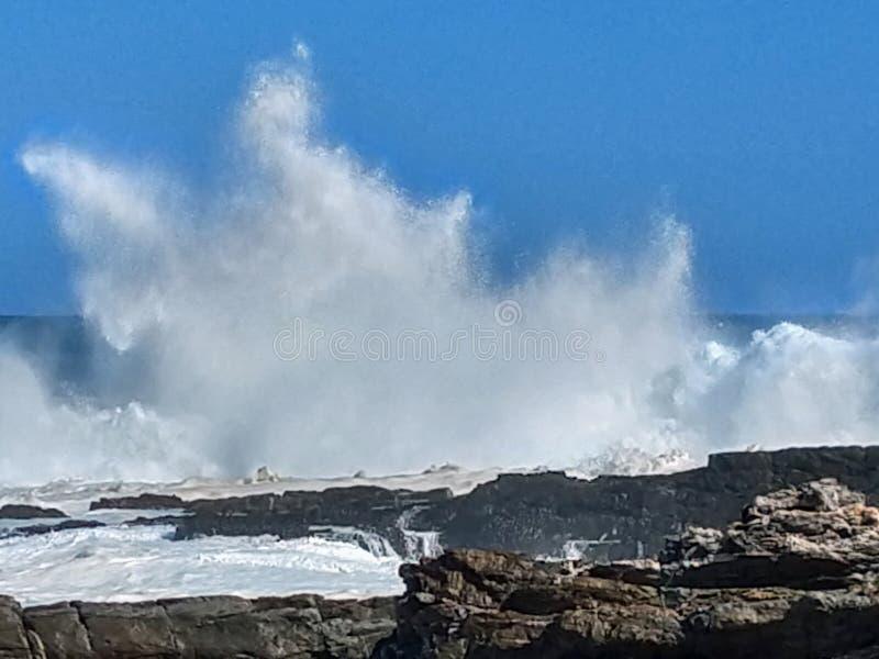 Grovt hav & höga vågor, flod för storm` s, Tsitsikamma, Sydafrika fotografering för bildbyråer