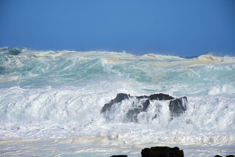 Grovt hav & höga vågor, flod för storm` s, Tsitsikamma, Sydafrika royaltyfri foto