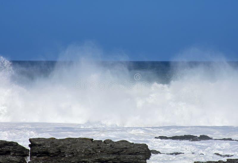 Grovt hav & höga vågor, Tsitsikamma nationalpark, Sydafrika royaltyfri bild