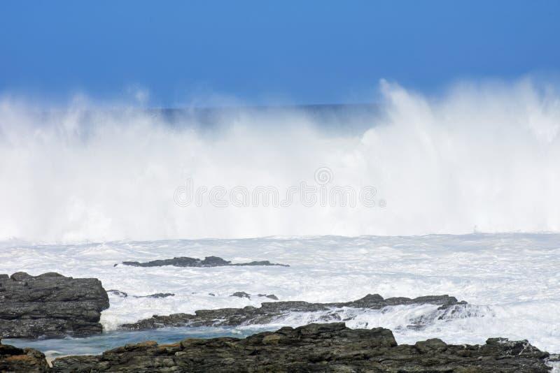 Grovt hav & höga vågor, Tsitsikamma nationalpark, Sydafrika royaltyfria bilder