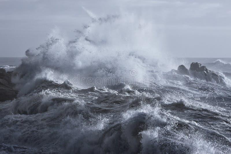 Grovt hav på kusten arkivfoton