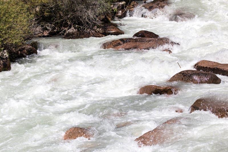 Grovt vatten i en bergflod royaltyfria foton