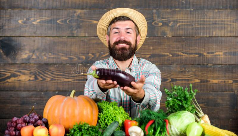 Grow organic crops. Organic fertilizers make soil and plants healthy and strong. Organic pest control. Man with beard. Wooden background. Farmer with organic royalty free stock photos