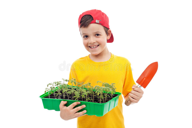 Grow your food stock images