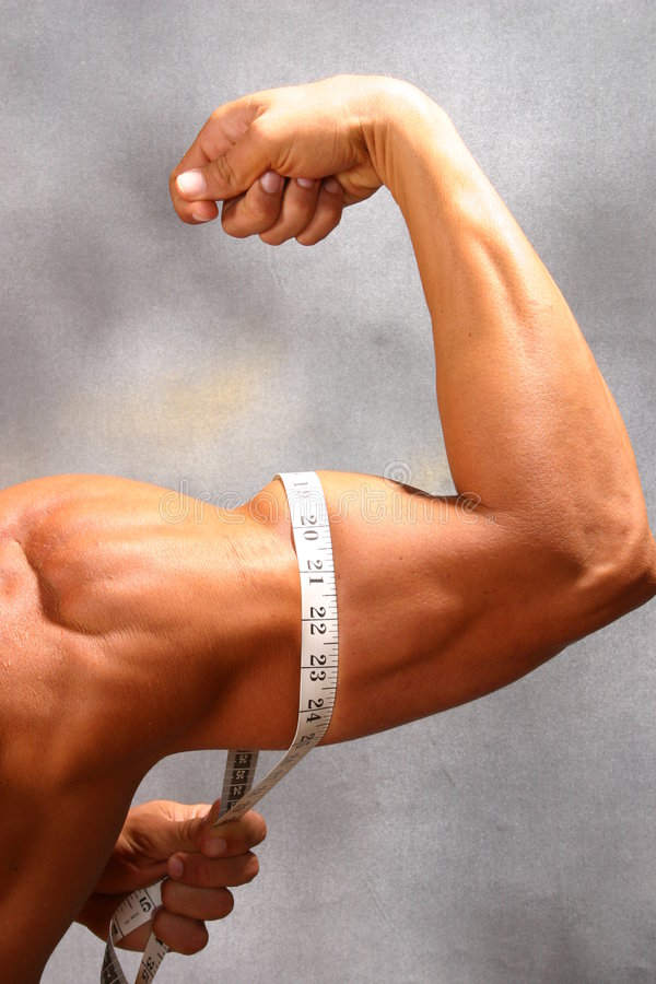 Grow your muscle stock photo