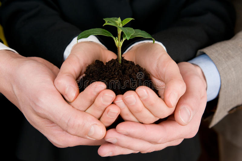 Growing green business stock image