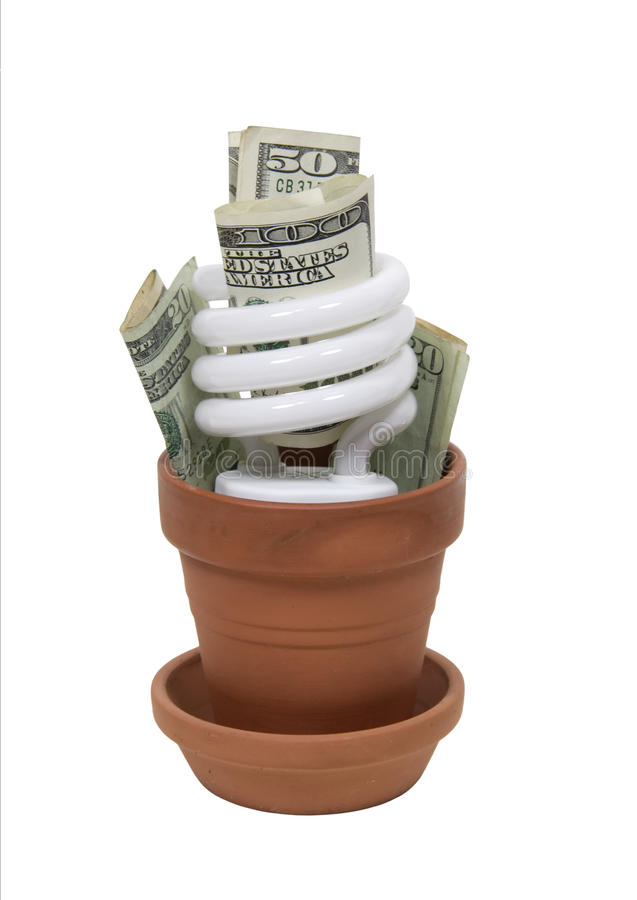 Growing Green Cost Effectively Royalty Free Stock Photo