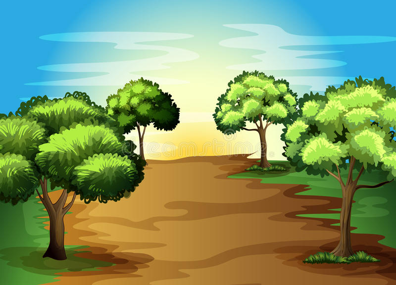Growing green trees in the forest vector illustration
