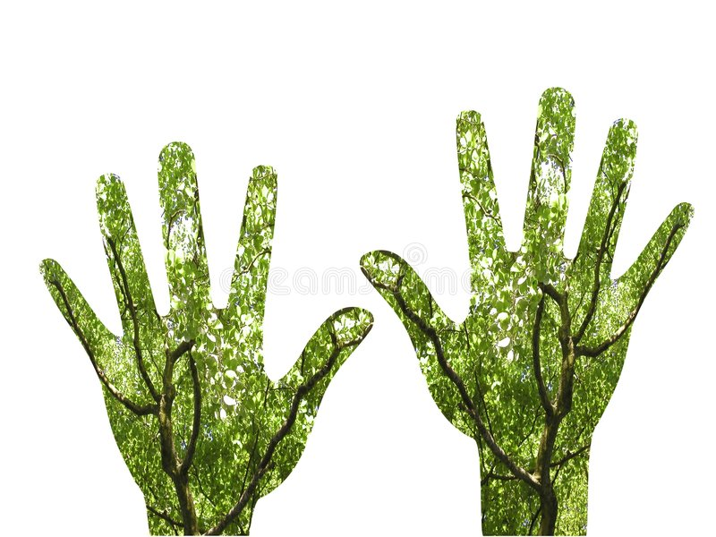 Growing hands. Shape of pair of hands filled with images of trees growing up to the sunlight, growth metaphor or gardening metaphor - green fingers vector illustration