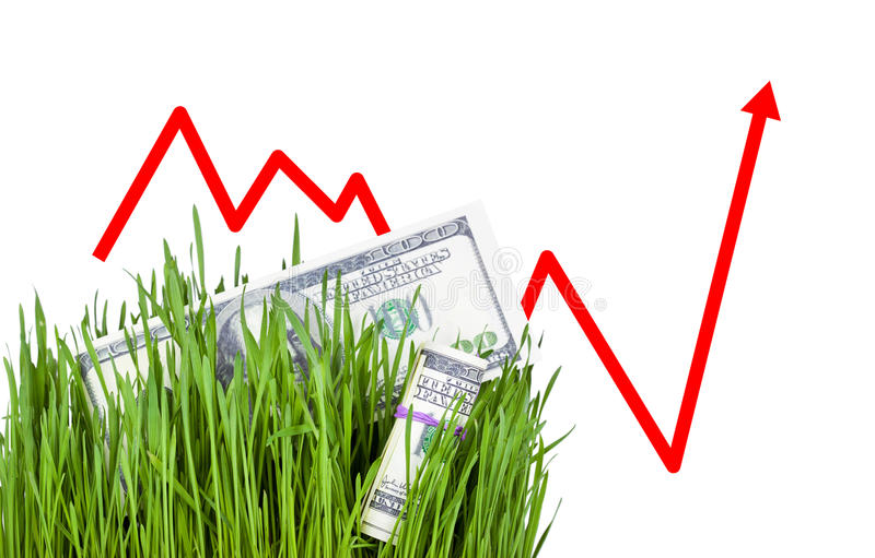 Growing Money in grass royalty free stock image