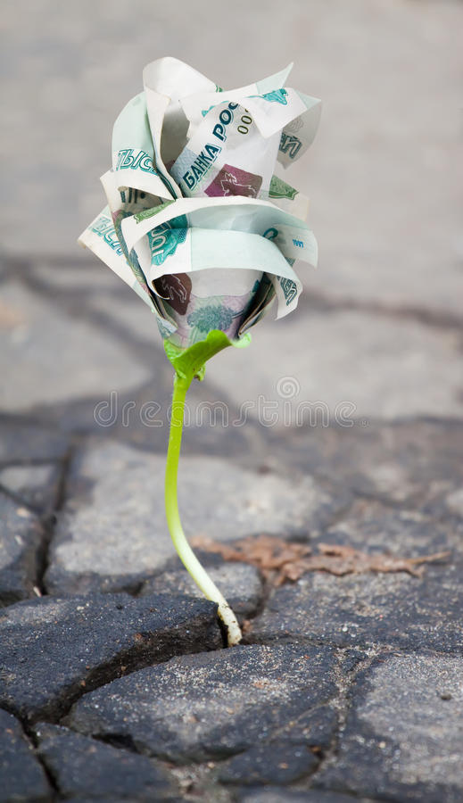 Download Growing  Money Sprout In Asphalt Stock Image - Image: 17191419