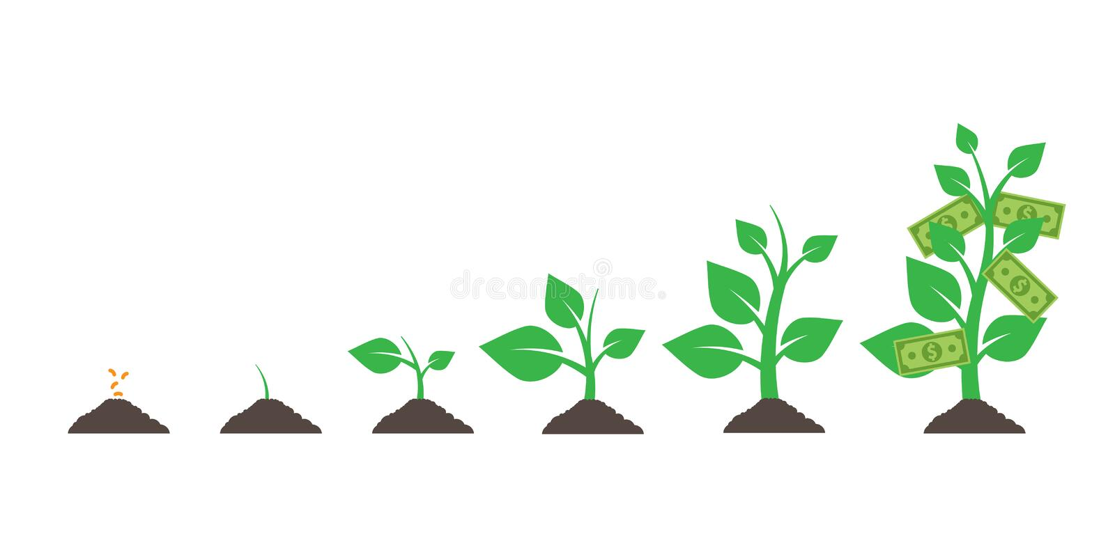 Growing money tree. isolated on white background. Vector illustration. Eps. Growing money tree. isolated on white background. Vector illustration. Eps 10 vector illustration