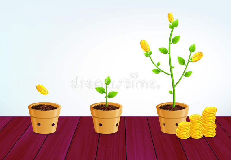 Growing Money Tree. Successful Business Saving Growth Concept royalty free stock photography