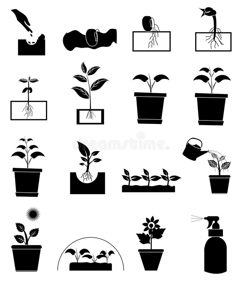 Growing plant icons set royalty free illustration