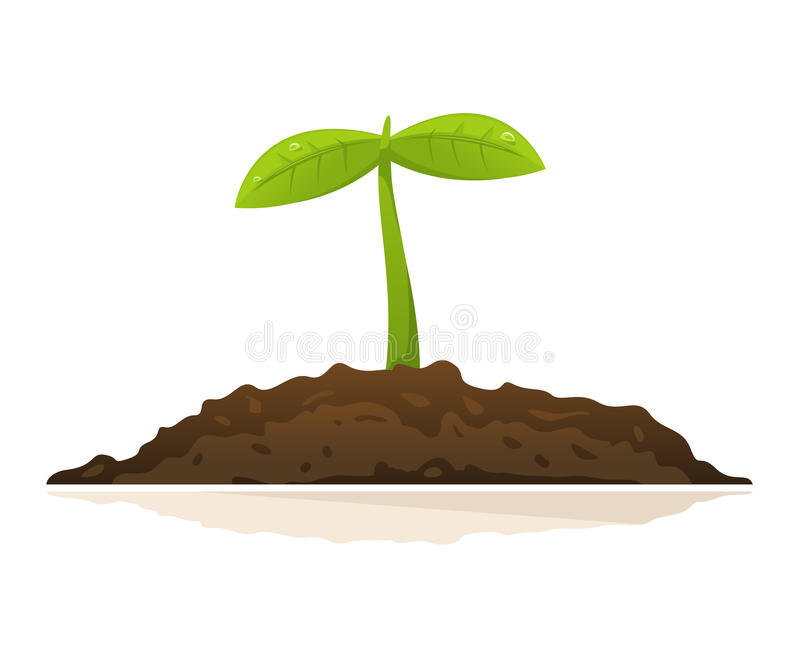 Growing Plant royalty free illustration