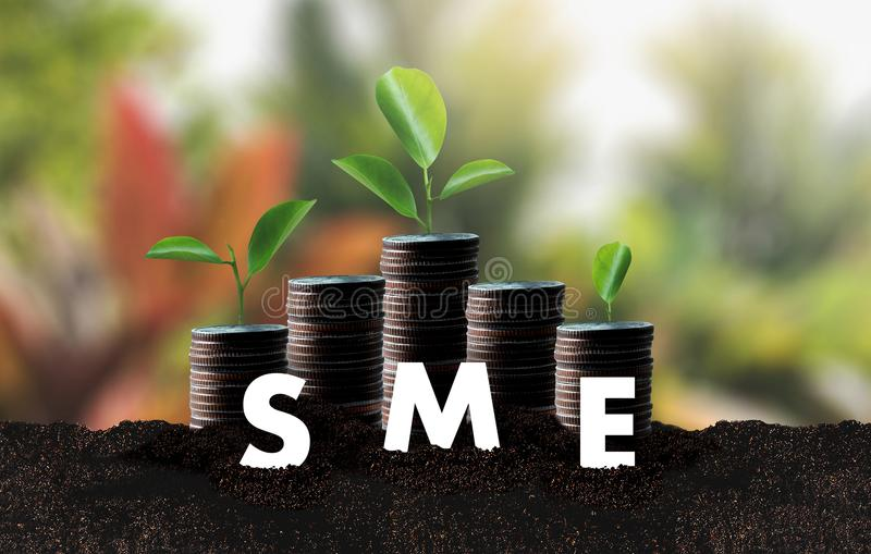 Growing Savings business SME or Small and medium-sized enterprises Computing Computer royalty free stock photography