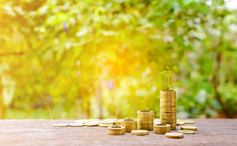 Growing silver coins and saving money step succeed stock image