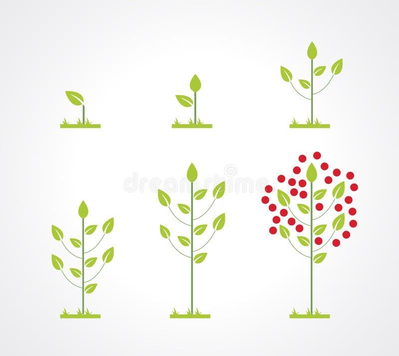 Growing tree icon set stock illustration