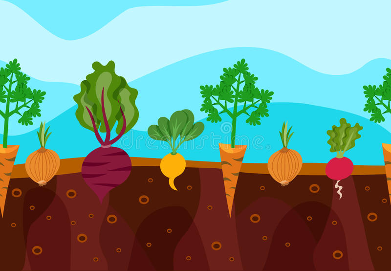 Growing Vegetables Illustration. Vegetables decorative icons set growing in garden soil vector illustration stock illustration