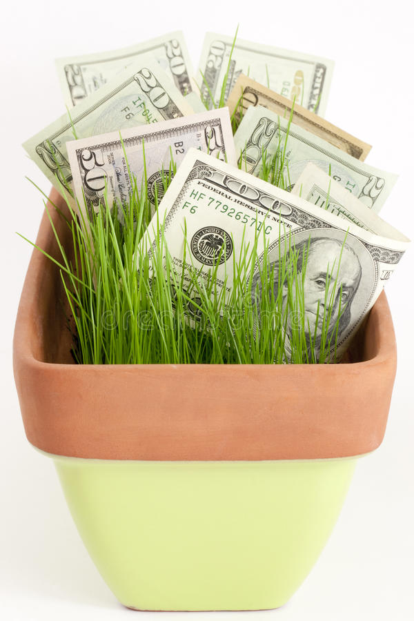 Growing your investment stock image
