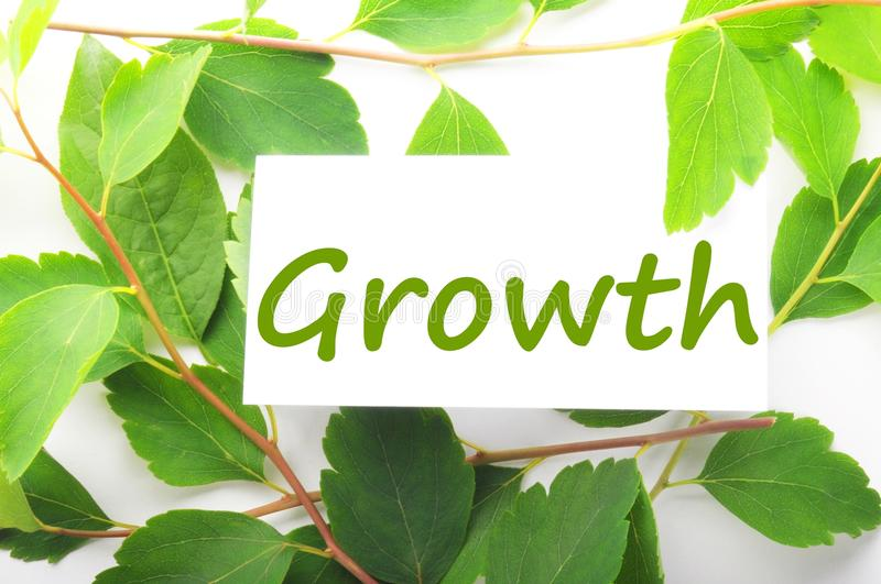 Growth. Concept with word on nature still life stock photos