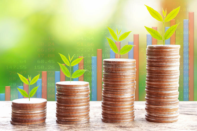 Growth business concept, tree growing on stack of coins royalty free stock images