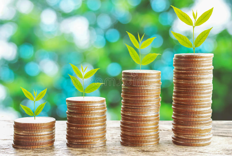 Growth business concept ,tree growing on stack of coins royalty free stock photos