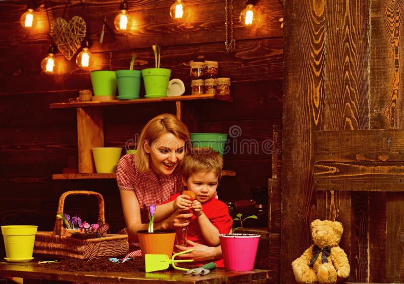Growth concept. Little boy and woman spraying young plant with water to grow, growth. Growth and development. Growth. Growth concept. Little boy and women royalty free stock image