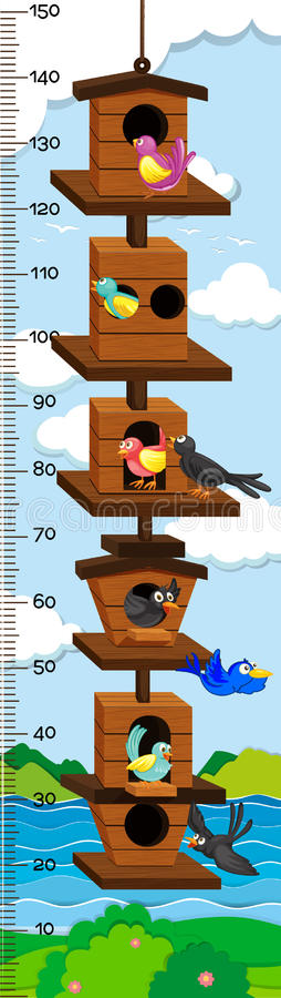Growth mearsuring chart with birds in birdhouse. Illustration royalty free illustration
