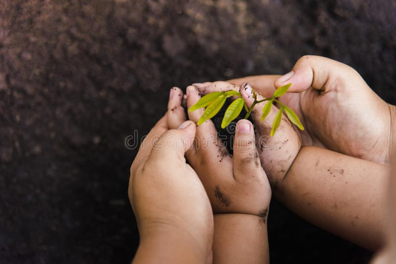 Growth tree Green background with black clay. Trees with money, saving money and growing hands. stock images