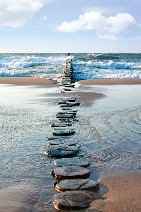 Groyne do mar foto de stock