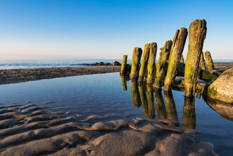 Groyne na costa do mar Báltico fotografia de stock royalty free