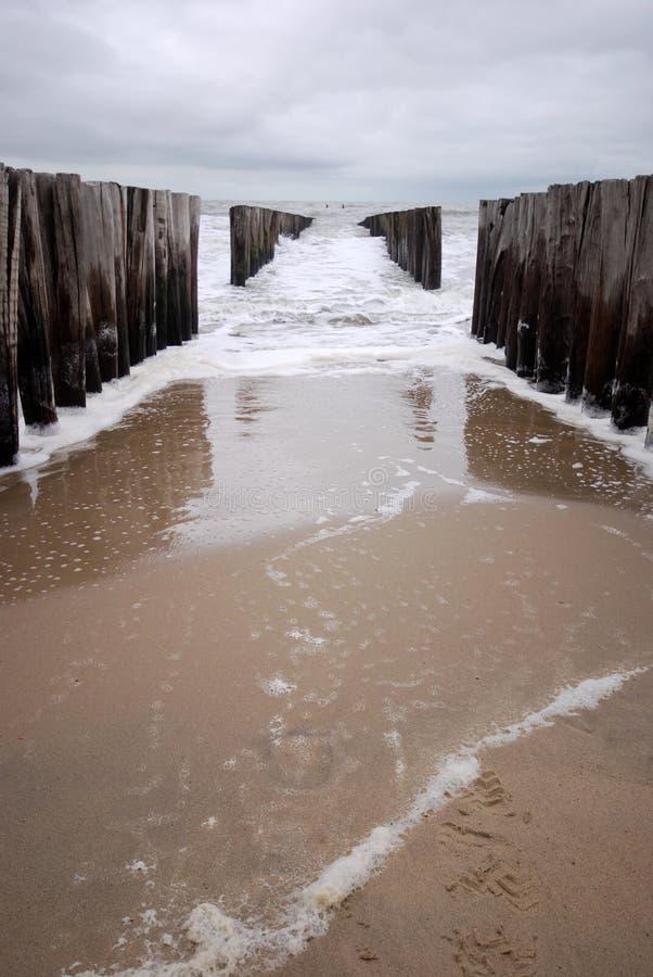 Groyne na praia fotografia de stock royalty free