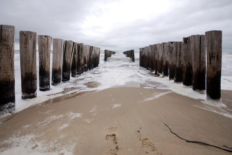 Groyne na praia fotografia de stock