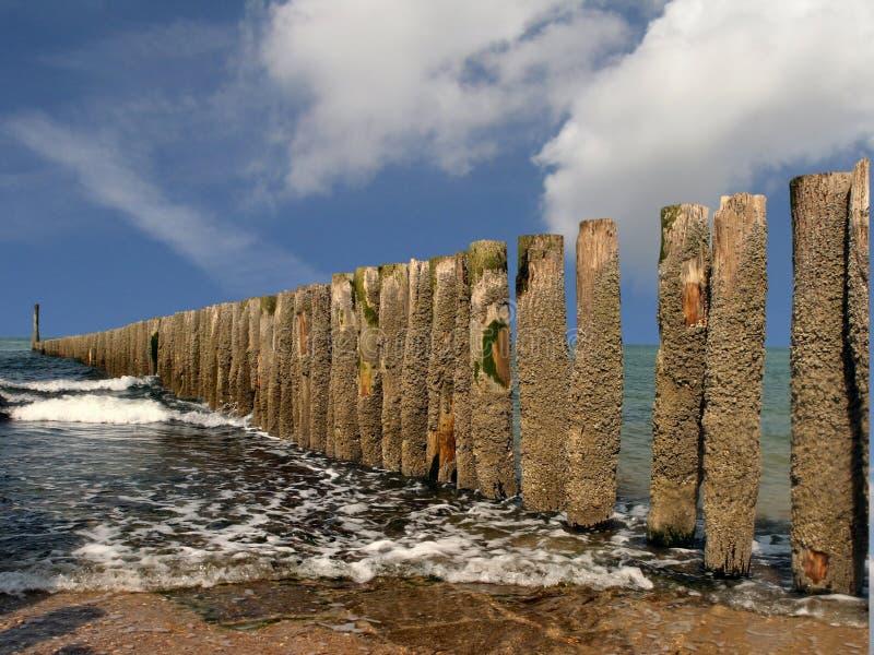 Groynes en la playa foto de archivo libre de regalías