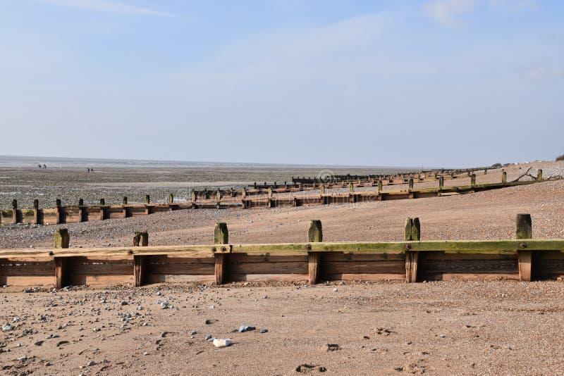 Groynes na plaży zdjęcia stock