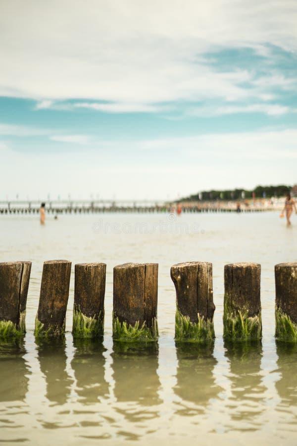 Groynes w morzu bałtyckim obraz royalty free