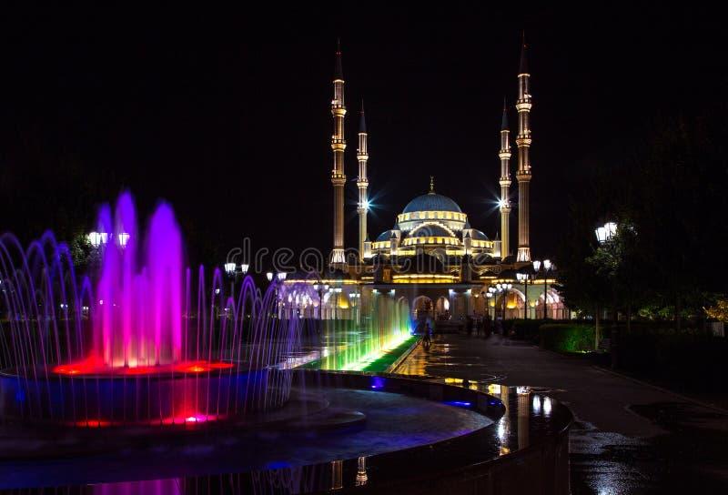 Grozny bij nacht stock foto's