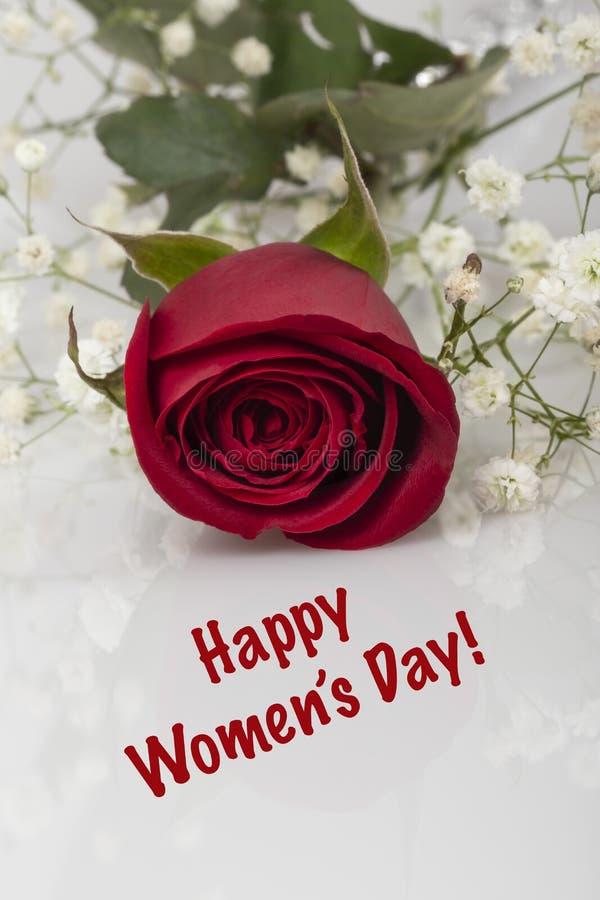 Gruß mit einer roten Rose für den Tag der Frauen lizenzfreie stockfotos