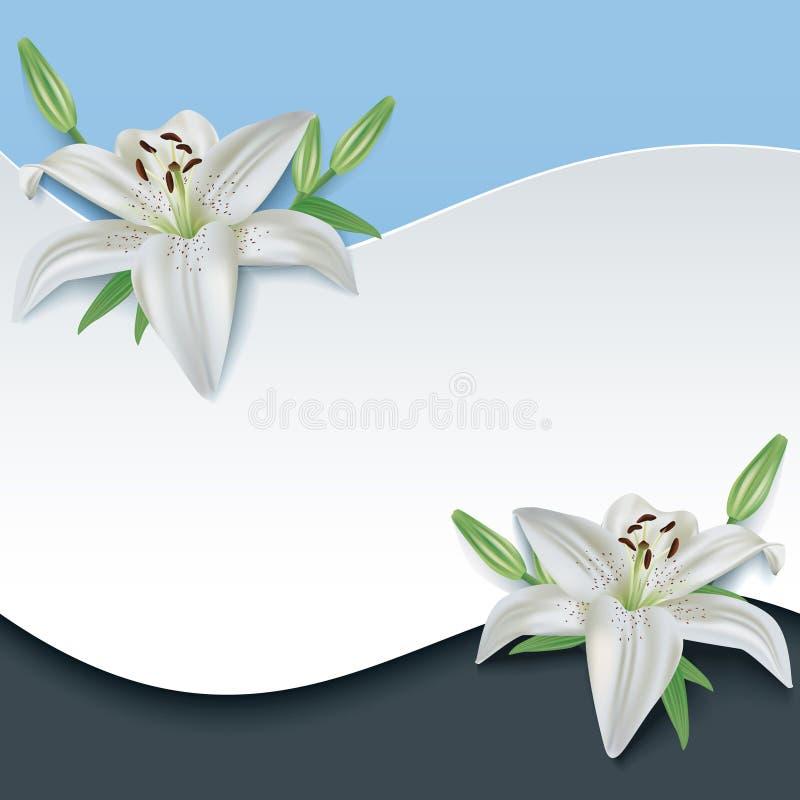 Gruß- oder Einladungskarte mit Lilie der Blume 3d vektor abbildung