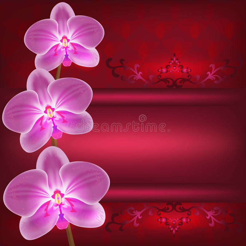 Gruß- oder Einladungskarte mit Orchideenblume, VE lizenzfreie abbildung