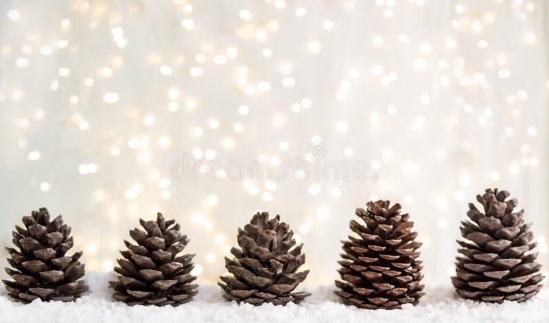 Grußkarte der frohen Weihnachten und des guten Rutsch ins Neue Jahr mit Kopieraum Tannenzapfen auf weißem Schnee Weiße Schneefloc lizenzfreies stockfoto