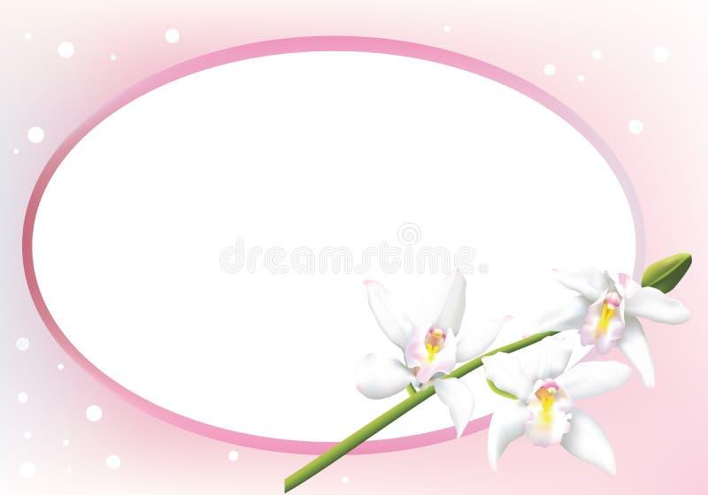 Grußkarte mit Cymbidiumorchideen stock abbildung