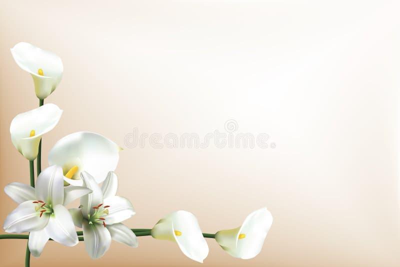 Grußkarte mit Lilien und Callalilien stock abbildung