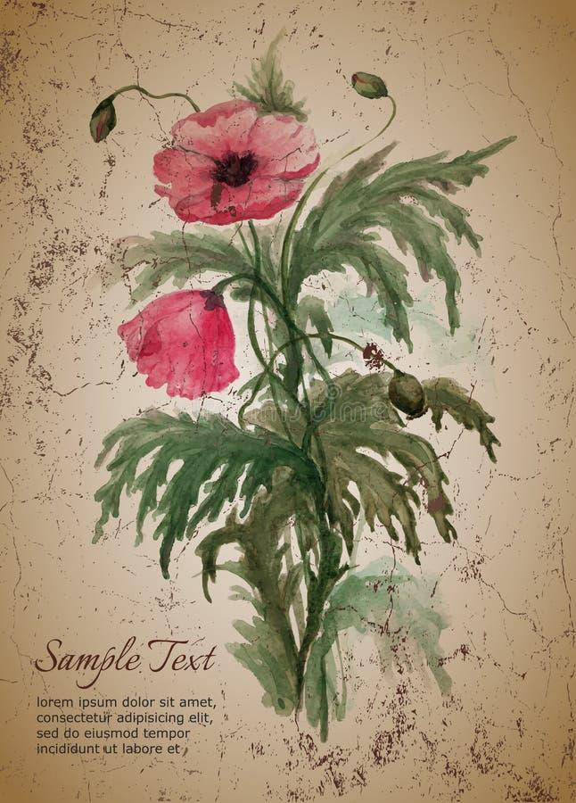 Grußkartenschablone mit Blumenstrauß von roten Mohnblumen stock abbildung