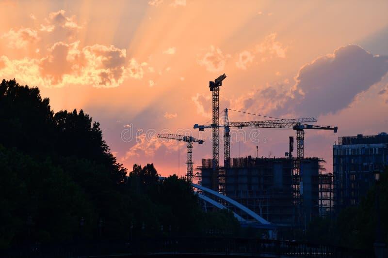 Gru di costruzione profilate al tramonto fotografia stock