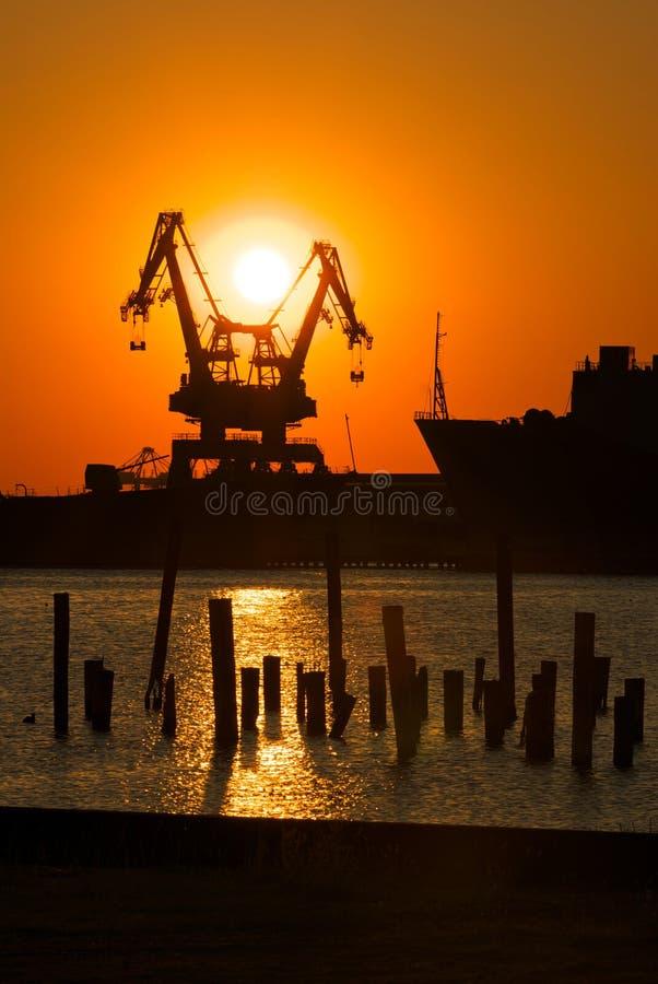 Gru industriali al tramonto fotografia stock